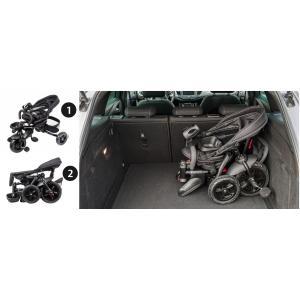 HyperMotion driewieler met duwstang TOBI MAJESTIC - Opvouwbaar - Zwart